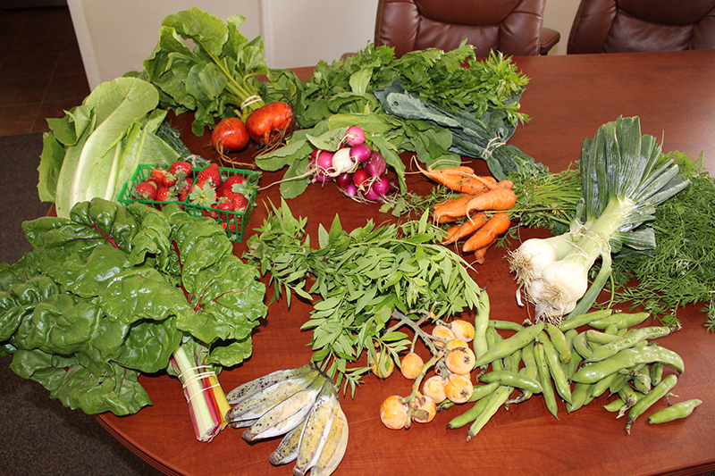 fresh produce on a kitchen table.