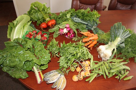 Community Supported Agriculture: Bring Home Fresh Organic Produce Every Week